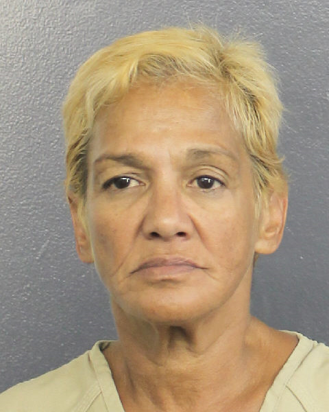 ANNA MILAGROS DONES Mugshot / South Florida Arrests / Broward County Florida Arrests